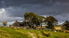 Ditsworthy Warren House - Old Sheep Farm (L I C H T B I L D E R) Tags: england dartmoor bog farm sheepfarm sheep devon oldfarm schafe schaffarm warren manor house sheepstor westdevon ditsworthywarren ditsworthywarrenhouse