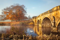 Golden morning. (J C Mills Photography) Tags: chatsworth park autumn colour bridge tree peak district derbyshire outdoors nature maple river water swan mist morning golden light statue italianate 18th century structure stately home country house arch leaves stone reflection