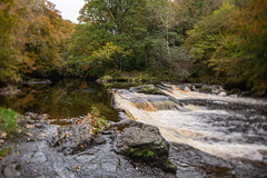Roe valley country park (jac.photography49) Tags: autumn canon exposure exercise reflections fullframe fauna images ireland view wideangle 5dmkiii rocks northernireland ngc river roevalley roe tiltsshift tree valley water waterfall weir 24mm 5dmklll 9
