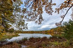 Autumn - Germany - Dechsendorfer Weiher 1217 (Peter Goll thx for +14.000.000 views) Tags: 2018 autumn natur herbst dechsendorf nature erlangen bayern deutschland dechsendorferweiher lake pond landscape landschaft fall