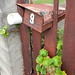 letterbox, october 2019 (1)