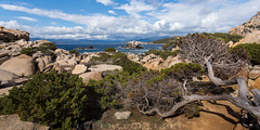 Campomoro, Corse (*Sébastien Cors' / PicturWall / iLOVEyourHOME*) Tags: sébastien cors picturwall 6d 1635 f4 campomoro corse france paysage landscape mer sea sun ciel sky nuage cloud bleu blu