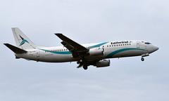 Tailwind TC-TLB, OSL ENGM Gardermoen (Inger Bjørndal Foss) Tags: tctlb tailwind boeing 737 osl engm gardermoen