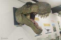 "Excursão para Monte Alto - Museus Histórico - Cultural - Paleontologia • <a style=""font-size:0.8em;"" href=""http://www.flickr.com/photos/134435427@N04/48990964508/"" target=""_blank"">View on Flickr</a>"