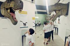 "Excursão para Monte Alto - Museus Histórico - Cultural - Paleontologia • <a style=""font-size:0.8em;"" href=""http://www.flickr.com/photos/134435427@N04/48990966528/"" target=""_blank"">View on Flickr</a>"