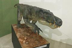 "Excursão para Monte Alto - Museus Histórico - Cultural - Paleontologia • <a style=""font-size:0.8em;"" href=""http://www.flickr.com/photos/134435427@N04/48990966818/"" target=""_blank"">View on Flickr</a>"