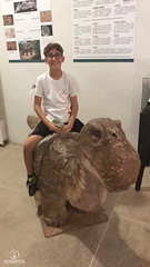 "Excursão para Monte Alto - Museus Histórico - Cultural - Paleontologia • <a style=""font-size:0.8em;"" href=""http://www.flickr.com/photos/134435427@N04/48990969778/"" target=""_blank"">View on Flickr</a>"