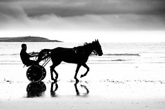 Horse and trap on a gloomy day, at Warren Strand, Rosscarbery, West Cork (Peter Quinn1) Tags: rosscarbery horseandtrap beach atlantic ireland warrenstrand reflection horse trotting silhouette sea galleyhead highkey