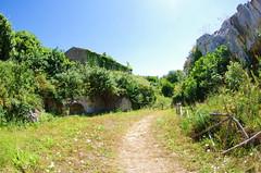 1128 Sicile Juillet 2019 - Palazzolo Acreide, Tempio di Afrodite, Temple d'Aphrodite (paspog) Tags: palazzoloacreide tempiodiafrodite templedaphrodite sicile sicily sicilia juli july juillet 2019