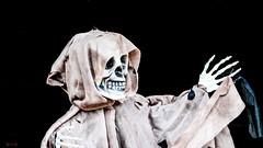 #Halloween - 7634 (✵ΨᗩSᗰIᘉᗴ HᗴᘉS✵90 000 000 THXS) Tags: sony sonydscrx10m4 blackbackground skeleton halloween belgium europa aaa namuroise look photo friends be yasminehens interest eu fr party greatphotographers lanamuroise flickering pairidaiza night