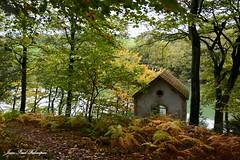 Suguensou (jean-paul Falempin) Tags: autumn bois rivière couleurs boisdesuguensou arbres pavillon