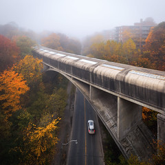 Valley of Rosedale (Brady Baker) Tags: toronto ontario canada downtown rosedale valley mist fog bridge road car motion blur transportation street high angle view fall autumn season tree leaves color colour wet moist humid cloud sky outdoor nature urban city morning early weather