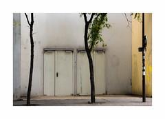 Sans titre (hélène chantemerle) Tags: rue murs portes arbres panneaux lumière street walls doors sign light