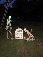 Making Mischief (Willowcottage Photography) Tags: skeleton joke funny ghost halloween grave yard display costume trick treat mischief stone skeletons mannequin devilish fun tom fool foolery sophmoric humor comedy team non sequitor bone grin digger candlelight