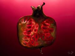 Rosso Granato.. (Antonio Iacobelli (Jacobson-2012)) Tags: rosso granato red melograno fruit pomegranate bari fujifilm 120mm macro fujinon