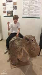 "Excursão para Monte Alto - Museus Histórico - Cultural - Paleontologia • <a style=""font-size:0.8em;"" href=""http://www.flickr.com/photos/134435427@N04/48991518001/"" target=""_blank"">View on Flickr</a>"