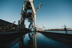 the docks   l   2019 (weddelbrooklyn) Tags: hamburg hafen kran museum nikon d5200 bungee schuppen50 elbe harbour hamburgerfotofreaks