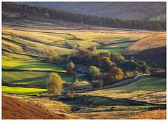 Shades of Autumn (KT Photography.) Tags: autumn trees eos goldenhour england ktphotography uk stanageedge photography landscape trip farm canon 6dmk2 peakdistrict october2019 hope unitedkingdom