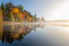 October Reflections (Chris Noronha Photo) Tags: fall autumn trees nature lake fog reflection colour color water sunrise landscape algonquin provincial park ontario canada