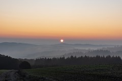 Die Sonne ist da / The sun is here (reipa59) Tags: nebel morgenrot sonnenaufgang landschaft landscape diesig sonne foggy ridges colorfrenzy wolken palatinate morning neblig herbstfarben sunrays frühmorgens rheinlandpfalz sunshine nature fog mist licht sun groundmist hügel herbstsonne morgenstunde misty pfalz meadow fall valleys autumn ranges colors forest natur karlshöhe light germany sonnenstrahlen northernpalatinate dorf morgenröte earlymorning himmel baum redsky morgens rhinelandpalatinate clouds farbrausch morgen sonnenschein nordpfalz sunbeams rot fallsun sunrise bäume cloudy täler wood dawn herbst autumncolors