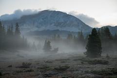 Vapeurs matinales... (Samuel Raison) Tags: hautsplateauxduvercors vercors brumes brouillard leverdujour sunrise mist fog foggy montagne paysage landscape scenery nikon nikond800 nikon282470mmafsg