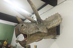"Excursão para Monte Alto - Museus Histórico - Cultural - Paleontologia • <a style=""font-size:0.8em;"" href=""http://www.flickr.com/photos/134435427@N04/48991710967/"" target=""_blank"">View on Flickr</a>"