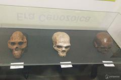 "Excursão para Monte Alto - Museus Histórico - Cultural - Paleontologia • <a style=""font-size:0.8em;"" href=""http://www.flickr.com/photos/134435427@N04/48991712892/"" target=""_blank"">View on Flickr</a>"