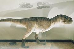 "Excursão para Monte Alto - Museus Histórico - Cultural - Paleontologia • <a style=""font-size:0.8em;"" href=""http://www.flickr.com/photos/134435427@N04/48991714127/"" target=""_blank"">View on Flickr</a>"