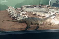 "Excursão para Monte Alto - Museus Histórico - Cultural - Paleontologia • <a style=""font-size:0.8em;"" href=""http://www.flickr.com/photos/134435427@N04/48991714312/"" target=""_blank"">View on Flickr</a>"