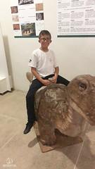 "Excursão para Monte Alto - Museus Histórico - Cultural - Paleontologia • <a style=""font-size:0.8em;"" href=""http://www.flickr.com/photos/134435427@N04/48991716347/"" target=""_blank"">View on Flickr</a>"