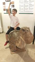 "Excursão para Monte Alto - Museus Histórico - Cultural - Paleontologia • <a style=""font-size:0.8em;"" href=""http://www.flickr.com/photos/134435427@N04/48991716387/"" target=""_blank"">View on Flickr</a>"