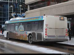 Winnipeg Transit #144 (vb5215's Transportation Gallery) Tags: winnipeg transit 2011 new flyer d40lfr