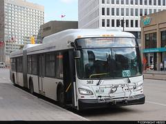 Winnipeg Transit #382 (vb5215's Transportation Gallery) Tags: winnipeg transit 2019 new flyer xd60 xcelsior