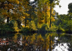 Autumn Reflections (Jocelyn777) Tags: landscapes water lakes waterreflections trees foliage autumncolours parks nature outdoor