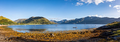 arnisdale (Phil-Gregory) Tags: glenelg2019 arnisdale scenicsnotjustlandscapes scotland highlands corran water wideangle panorama sky skye loch tokina1120mmatx tokina ultrawide lightroom