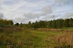 Vlaardingen (Hugo Sluimer) Tags: broekpolder broekpoldervlaardingen vlaardingen natuur nature natuurfotografie natuurfotograaf naturephotography herfst nederland zuidholland holland nikon nikond500 d500