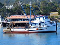 Monterey California (F R Childers Photography) Tags: monterey california montereycalifornia pacificgrove californiacoast montereycoast nikon nikoncamera