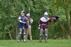 Provocation (Phil du Valois) Tags: provocation moyenâge médiéval arme écu épée spectacle armure