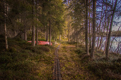 Path (mabuli90) Tags: finland lake nature forest road tree boat autumn fall wood