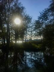 Enjoy the autumn-sunlight (Petraa_) Tags: kralingseplas 010 rotterdam trees tree bomen weerspiegeling meer water lake middagzon zon autumn sun natuur nature kralingen kralingsebos heemtuin