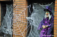 Web Entanglement (Trish Mayo) Tags: witch witches witchhat halloween halloweendecorations cobweb spiderweb upperwestside