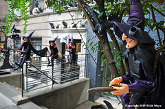 They Fly By Night And Day (Trish Mayo) Tags: witch witches witchhat halloween halloweendecorations cobweb spiderweb upperwestside