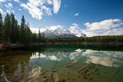 Herbert Lake (Pat.Mtl.) Tags: tamron 17 35 28 nikon d600 d610 alberta canada herbert lake rockies mountain wet reflection