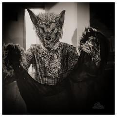 Nyctimus (_Matt_T_) Tags: werewolf 365 bw greekmythology dailyinoctober happyhalloween