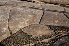 weathering (julie burgher) Tags: rockplatform weathering rockform woodyhead bundjalungnationalpark northernnewsouthwales australia tafoni