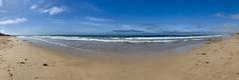 A glorious morning at Ocean Grove. (The Pocket Rocket) Tags: oceangrovebeach oceangrove bassstrait bellarinepeninsula victoria australia