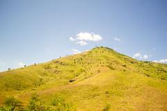 DSC_7009_edited (Proflázaro) Tags: brasil nordeste bahia montanha árvore montanhadabahia céu nuvem verde azul branco cerrado árvoredocerrado paisagem paisagemnatural paisagemdabahia paisagemdonordeste paisagemdobrasil natureza naturezadabahia naturezadonordeste naturezadobrasil ecologia nikon nikond3100