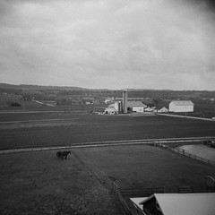 Farmhouse (Joe_R) Tags: mediumformat ilfordhp5 bw iso400 holga film ronks pennsylvania unitedstatesofamerica farm countryside