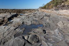 rock platform (julie burgher) Tags: rockplatform weathering rockform woodyhead bundjalungnationalpark northernnewsouthwales australia