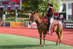 2019_UCMvPittState_FB-249 (Mather-Photo) Tags: actionphotography andrewmather andrewmatherphotography centralmissouri centralmissourimules collegefootball eventphotography football footballphotography freelancephotographer kcphotographer kansascityphotographer miaa makeityours matherphoto missouri mules mulesfootball ncaa ncaad2 ncaadii ncaadivisionii ncaa2 ncaaii photography photojournalism sports sportsphotographer sportsphotography teamucm ucm ucmathletics ucmfootball ucmmules ucmmulesfootball ucmo universityofcentralmissouri universityofcentralmissouriucm